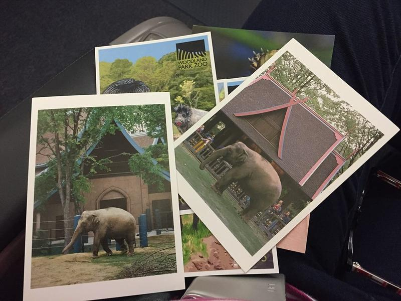 Photos and brochures from the Woodland Park Zoo in Seattle showing Chai and Bamboo, two elephants that will now reside in Oklahoma City.