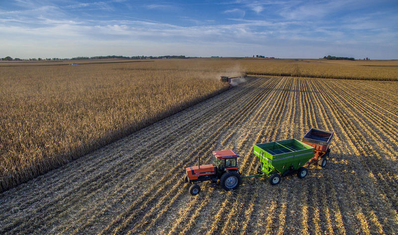 A central Illinois farmer harvests his crop shortly before sundown on Sept. 24, 2015. U.S. agricultural exports reached a record level in 2014, according to the U.S. Department of Agriculture.