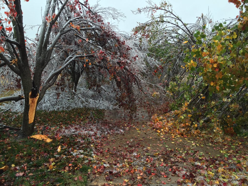 Storm damage at a home in Piedmont after the Thanksgiving 2015 ice storm.