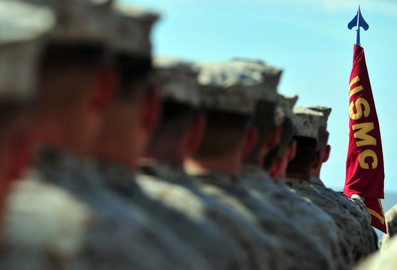 "Marines from the 15th Marine Expeditionary Unit attached to Battalion Landing Team, 1st Battalion 4th Marines (BLT 1/4) and Combat Logistics Battalion 15 (CLB-15) stand at ""parade rest"" during a 235th United States Marine Corps birthday ceremony."