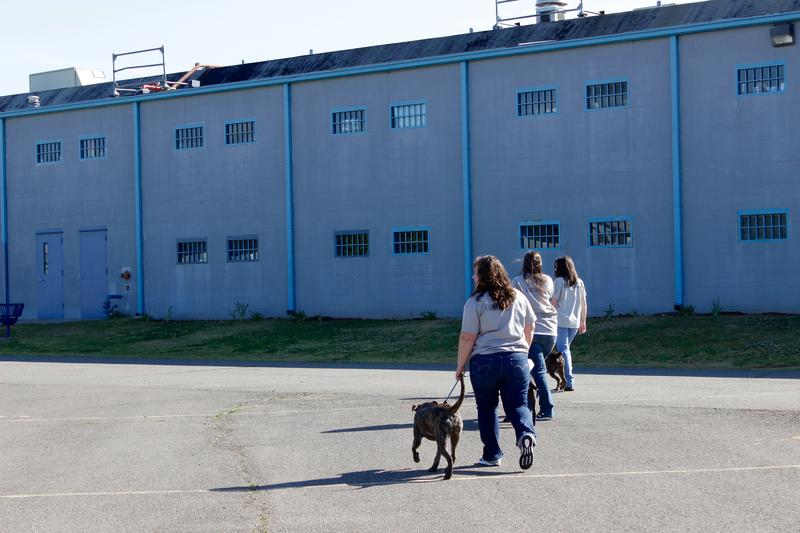 Inmates walk their training dogs at Mabel Bassett Correction Center in McLoud.
