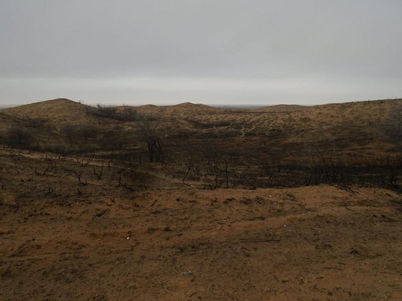 A burned field in northwestern Oklahoma.