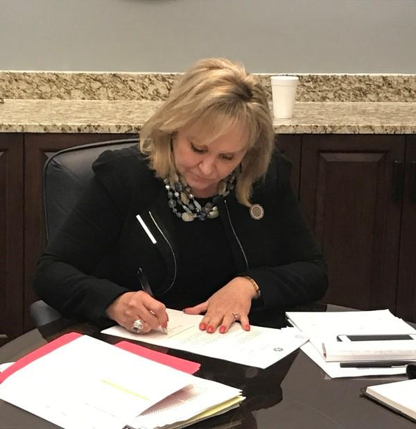 Gov. Mary  Fallin vetoed most of the state's revised budget bill on Friday, November 17, 2017.