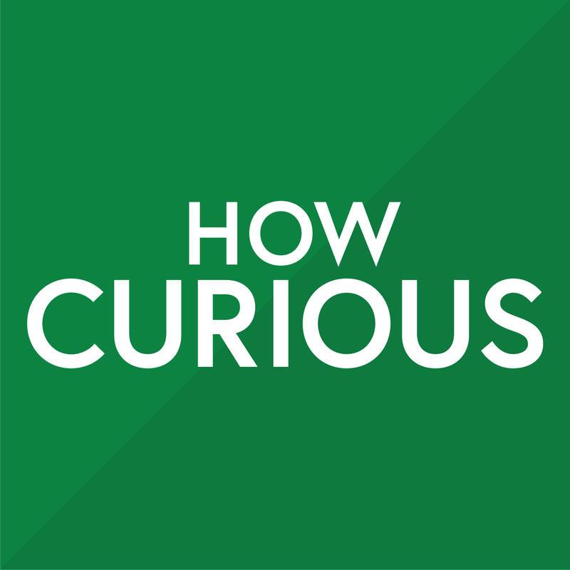 How Curious