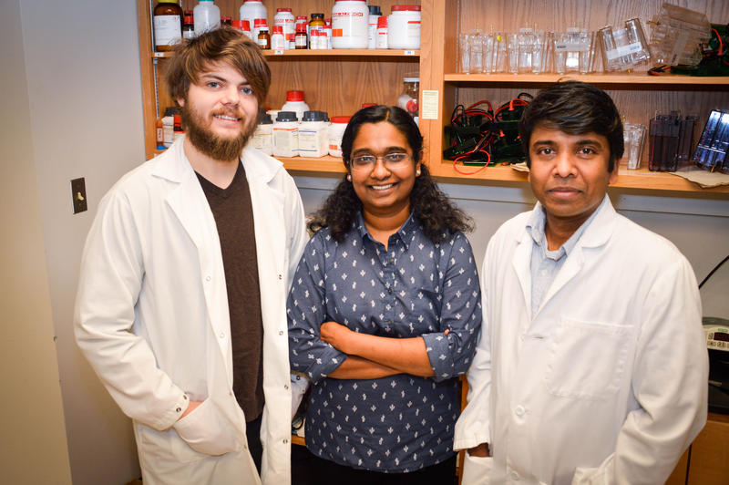 Lead researcher Deepa Sathyaseelan (middle), with fellow researchers Gavin Pharoah (left) and Shylesh Bhaskaran (right)