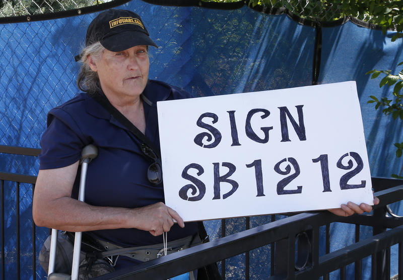 Kathy Renbarger, of Seminole, Okla., holds a sign urging Gov. Mary Ballin to sign SG1212, one of two gun-related bills vetoed by the governor following the 2018 legislative session.