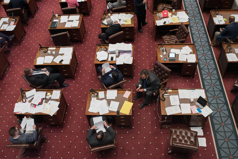 Members of the state Senate are shown here in May 2018. Seven of the 48 senators are women.