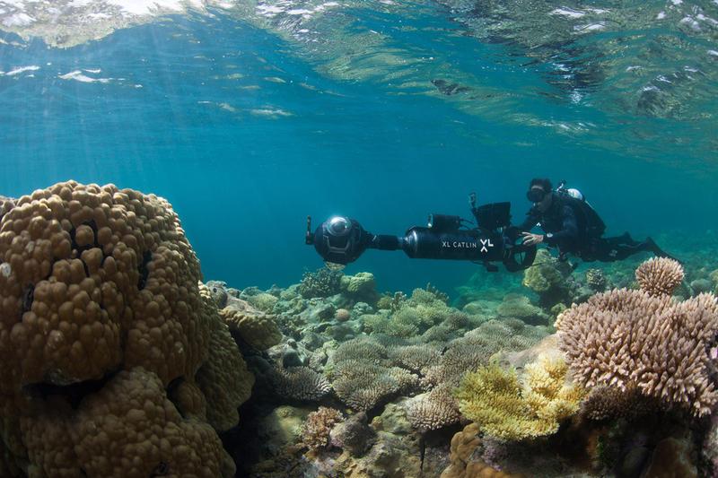 XL Catlin Seaview Survey