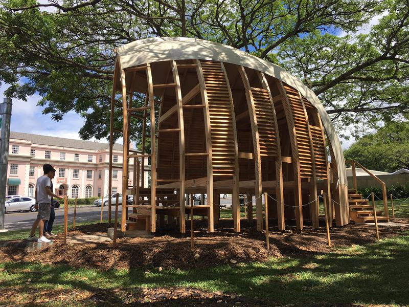 Joseph Valenti began working on this albizia wood structure while compelting his doctorate in achitecture at teh University of Hawaii. A recent grant from the U.S. Forest Service gave him funding to continue developing a viable supply of local wood.