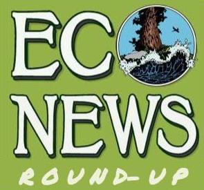EcoNews Report Roundup