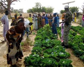 A cooperative garden in Senegal, part of the work done by CREATE!