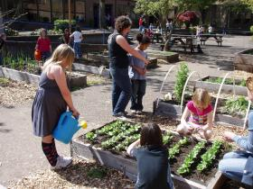 The Lane County School Garden Project in action.