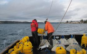 "Crew members of the research vessel ""Chasina"" drop an acoustic telemetry receiver down into Puget Sound. The device will record the passage of tagged steelhead."