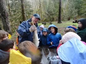 Class of Siuslaw Elementary 3rd graders learn about steelhead from a STEP volunteer as part of the group's education program.