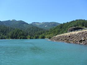 Cougar Dam blocks the natural migration of fish, including wild Chinook Salmon, which is on the Endangered Species List.