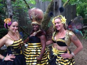 The bee ladies