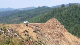 The BLM's Buck Rising timber sale abuts private timber clear cuts, which critics say both impact the same watersheds.
