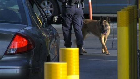 Federal K-9 unit inspects vehicles at the U.S. border with Mexico.