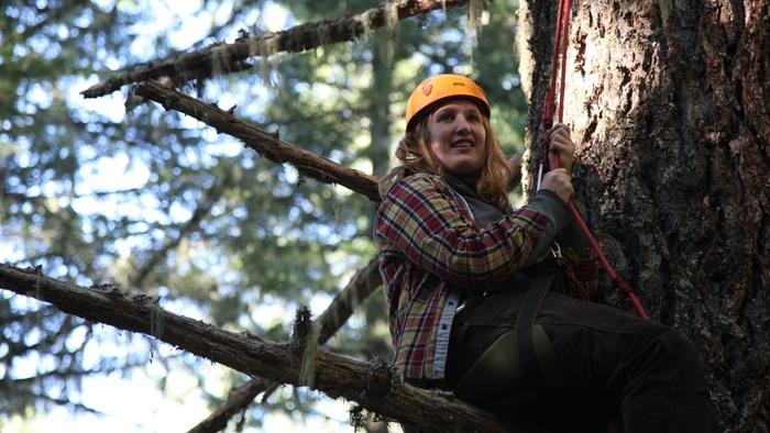 Kate Armstrong climbing up to tree camp. She and her fellow Cascadia Forest Defender protesters are concerned about a plan to log 120-year-old forests on O&C Lands.