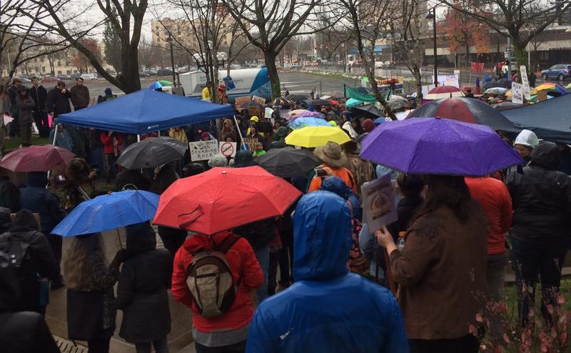 Despite a deluge of rain, hundreds showed for the event.
