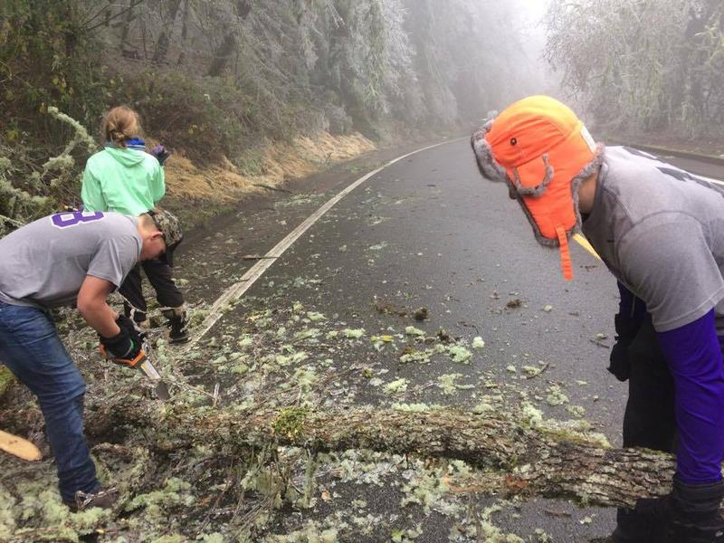 Aaron Smith and friends clear fallen trees from part of Willamette Street.