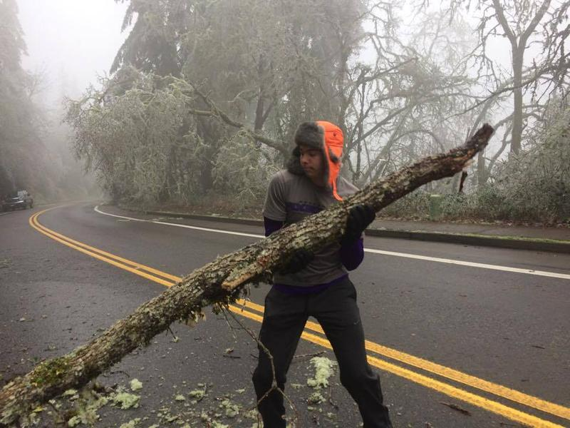 A local resident removes a fallen limb from a road.