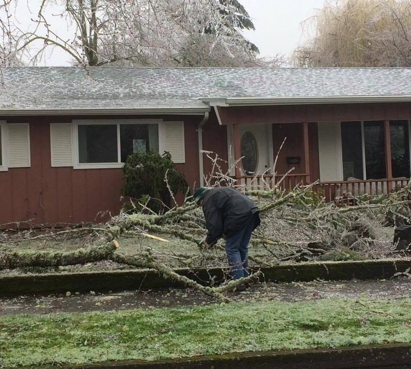 A Eugene resident cuts up downed branches.