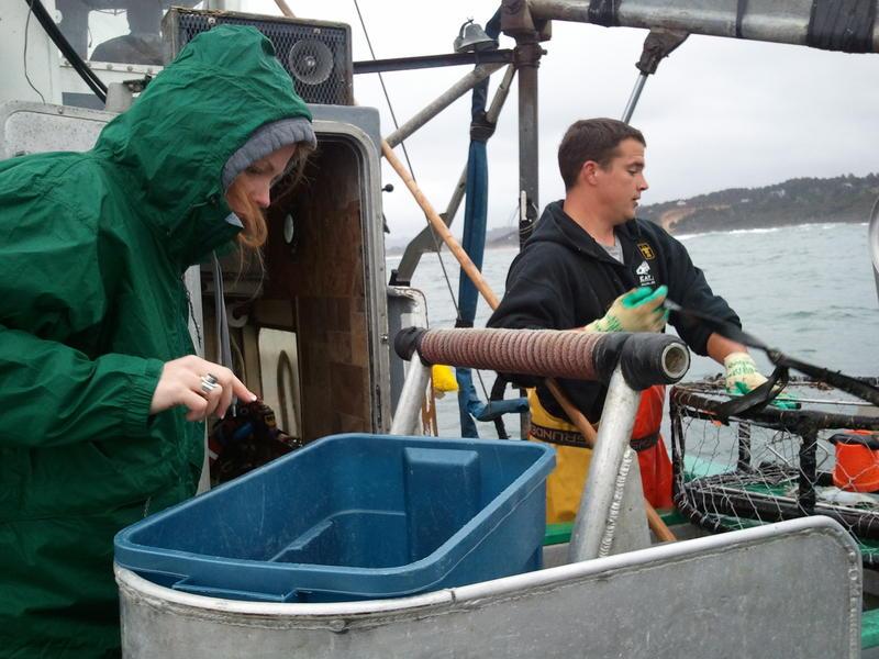 Crab fisherman off the Oregon coast.