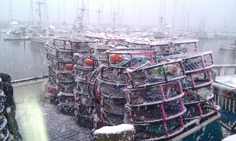 Crab cages stacked atop a fishing boat.