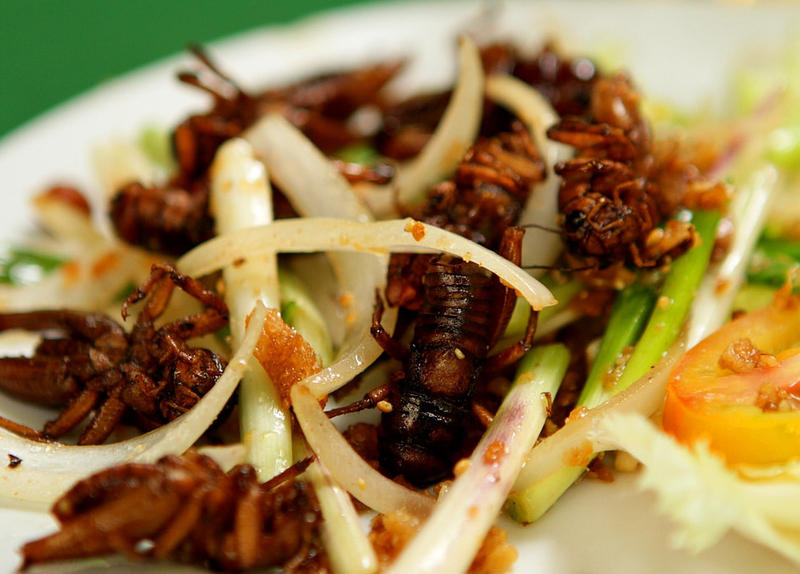 Cricket and onion salad, Ho Chi Minh City