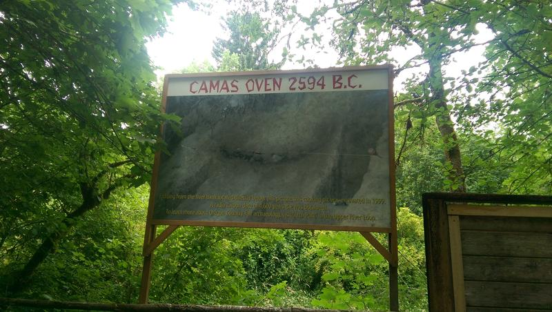 A sign describes the Camas oven recently found at the Oregon Country Fair site.