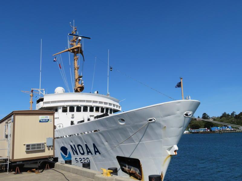 NOAA research vessel, The Fairweather, in Newport last May.