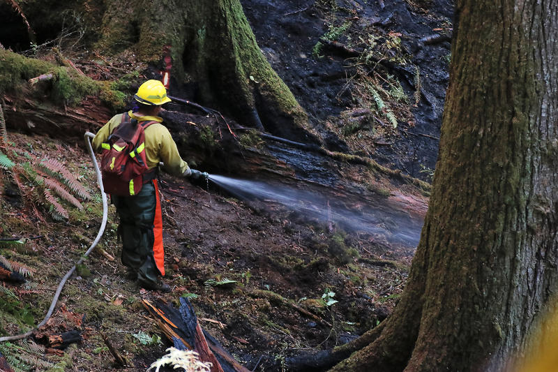 A firefighter on the front line of the Silver Creek Fire in Silver Falls State Park.