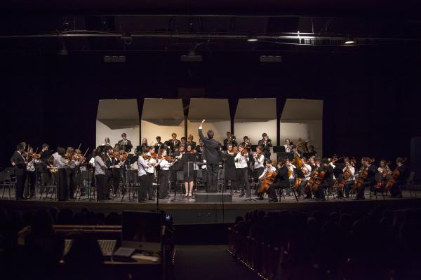 Eugene-Springfield Youth Orchestra