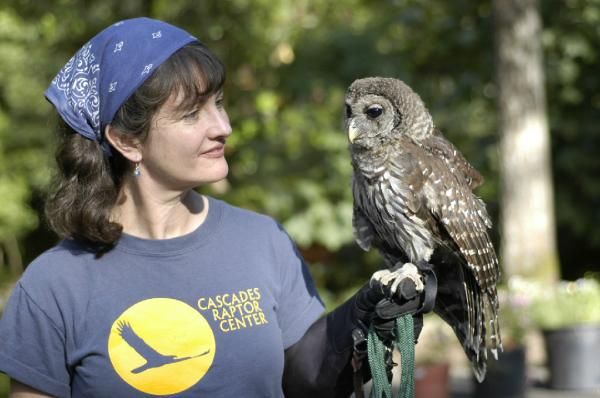 Melissa Hart with Bodhi the barred owl.