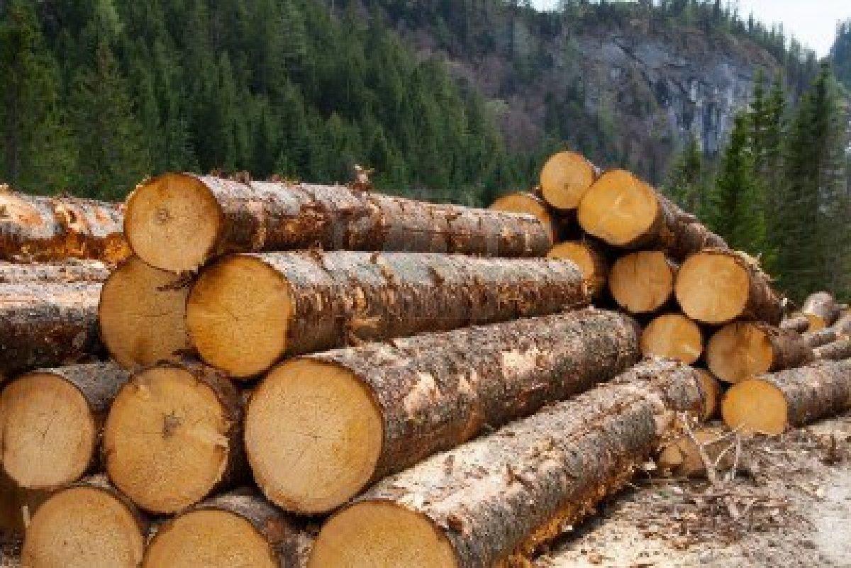 Natural Resource Partners Inc