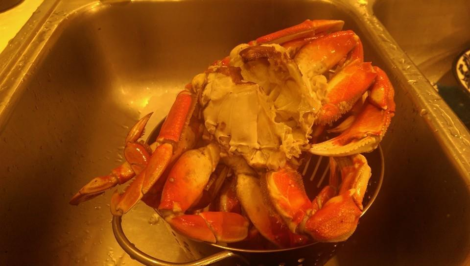 Toxin Again Delays Start Of Oregon Dungeness Crab Season