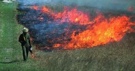 Range burning on the Konza Prairie.