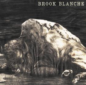New self-titled solo album from Brook Blanche