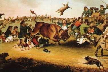 A representation of a particularly cruel and nearly forgotten tradition called bull baiting.