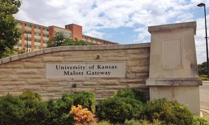 Endowments at places such as the University of Kansas have done well in the past year.