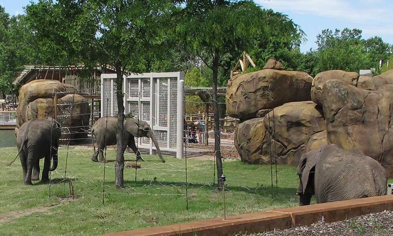 The Elephants of the Zambezi River exhibit at the Sedgwick County Zoo.