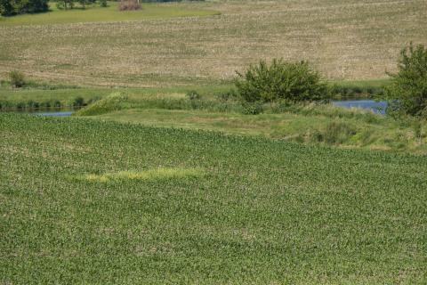 Cropland in the Midwest has been losing value for three straight years.