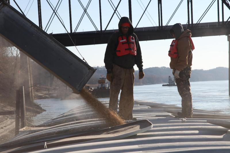 MFA Agriservices workers monitor the soybean chute in 2015 as a barge destined for the Mississippi River fills up on the Missouri River in Glasgow, Missouri.