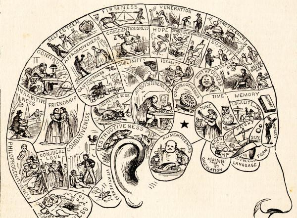A phrenology diagram from the People's Cyclopedia of Universal Knowledge (1883).