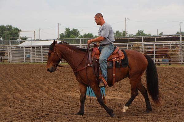 Inmate John Neu trains a horse during an open house at the Hutchinson Correctional Facility.