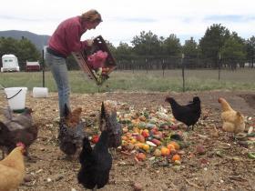 Sustainable food advocate Ali Coates.