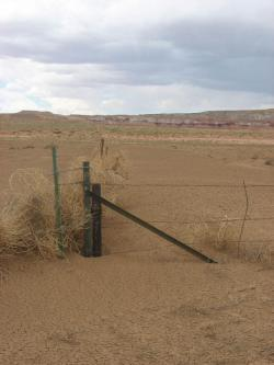 A scene of Southwestern drought
