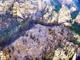 A part of the Slide Fire's burn area among the steep cliffs of Oak Creek Canyon.