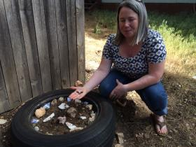 The Slide Fire came within three miles of Stephanie Birdwell's home south of Flagstaff. She voluntarily evacuated the day after the fire began. When she returned, pieces of blackened pine bark had drifted into her yard from the fire. She gathered them and put them in a used tire, which served as a planter, in order to nourish her plants.
